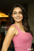 Andrea Jeremiah at Uttama Villain Movie Release PM (17)