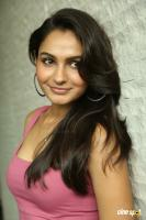 Andrea Jeremiah at Uttama Villain Movie Release PM (33)