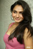 Andrea Jeremiah at Uttama Villain Movie Release PM (34)