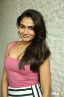 Andrea Jeremiah at Uttama Villain Movie Release PM (35)