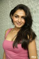 Andrea Jeremiah at Uttama Villain Movie Release PM (37)