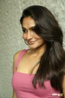 Andrea Jeremiah at Uttama Villain Movie Release PM (39)
