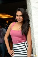 Andrea Jeremiah at Uttama Villain Movie Release PM (41)