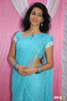 Gayatri Iyer Latest Stills (1)