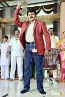 Lion Balakrishna Photos (2)