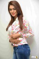 Anu Chinnappa Kannada Actress Photos