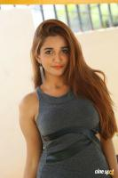 Anaika Soti at 365 Release Press Meet (18)