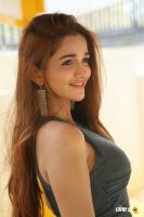 Anaika Soti at 365 Release Press Meet (26)