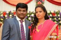 Thagubothu Ramesh Wedding Reception Photos