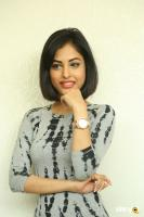 Priya Banerjee Latest Photos (45)