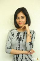 Priya Banerjee Latest Photos (46)