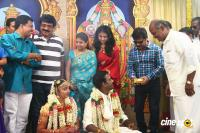 Vijayamuralee Son Wedding Reception (85)