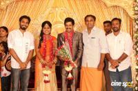 Vidharth Gayathri Devi Wedding Reception (2)