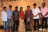 Vidharth Gayathri Devi Wedding Reception (23)