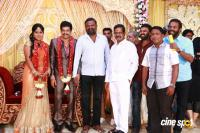 Vidharth Gayathri Devi Wedding Reception (45)