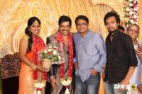 Vidharth Gayathri Devi Wedding Reception (7)