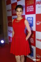 Kriti Kharbanda at SIIMA Pressmeet photos (16)