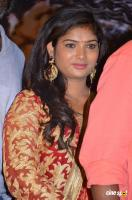Swetha at Virudhachalam Audio Launch (11)