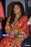 Swetha at Virudhachalam Audio Launch (8)