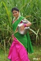 Virudhachalam Actress Swetha (7)