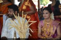 Saranya Mohan marriage photos (1)