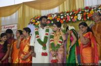 Saranya Mohan Reception photos (81)