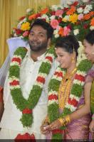 Saranya Mohan Reception photos (85)