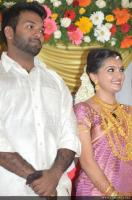 Saranya Mohan Reception photos (9)