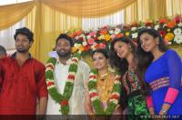 Saranya Mohan Reception photos (93)