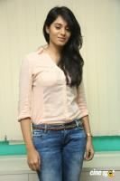 Deepa Sannidhi at Yatchan Team Meet (10)