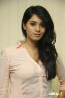 Deepa Sannidhi at Yatchan Team Meet (29)