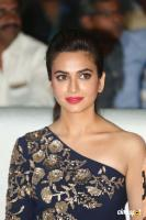 Kriti Kharbanda at Bruce Lee Audio Launch (6)
