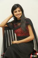 Actress Anandhi photoshoot (38)
