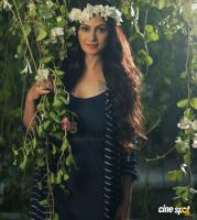Simran Exclusive Photo Shoot (11)