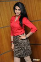 Gayathri Iyer at Ouija Press Meet (2)