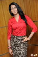 Gayathri Iyer at Ouija Press Meet (3)