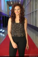 Seerat Kapoor Latest Photos (10)