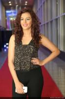 Seerat Kapoor Latest Photos (13)