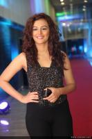 Seerat Kapoor Latest Photos (24)