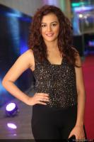 Seerat Kapoor Latest Photos (27)