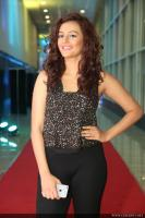 Seerat Kapoor Latest Photos (5)