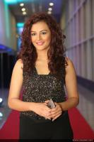 Seerat Kapoor Latest Photos (9)