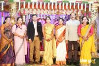 Siva Nageswara Rao Daughter Wedding Reception (61)