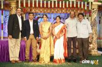 Siva Nageswara Rao Daughter Wedding Reception (62)