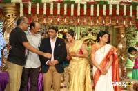 Siva Nageswara Rao Daughter Wedding Reception (83)