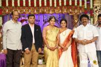 Siva Nageswara Rao Daughter Wedding Reception (85)