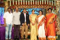 Siva Nageswara Rao Daughter Wedding Reception (91)