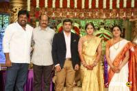 Siva Nageswara Rao Daughter Wedding Reception (93)