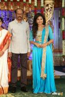 Siva Nageswara Rao Daughter Wedding Reception (98)