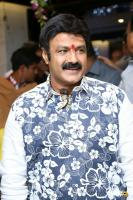 Balakrishna at Mirrors Launch (1)
